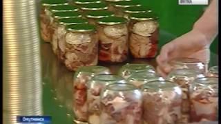 видео Недвижимость в Омутнинске