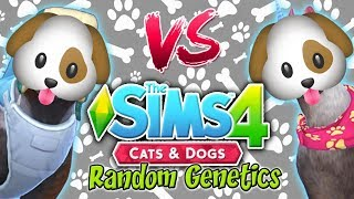 The Sims 4: Random Genetics DOG Challenge VS Yammy