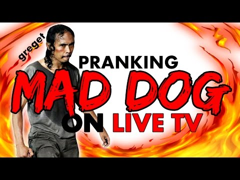 EXTREME PRANK CALL ON YAYAN RUHIAN aka MAD DOG!!
