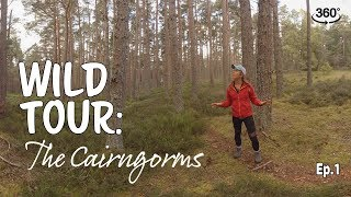 Wild Tour: The Cairngorms Ep.1 360° thumbnail