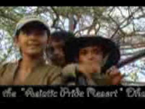 Asiatic Pride Resort Download 4 MB
