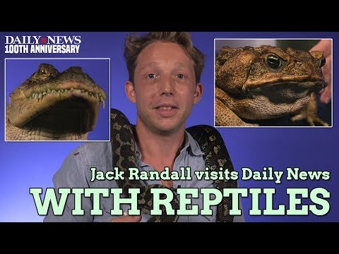 Jack Randall of National Geographic's 'Out There with Jack Randall' visits Daily News