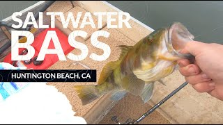 Saltwater Bass Fishing - Huntington Harbor, CA - Spotted Bay Bass and Sand Bass From Aluminum Skiff