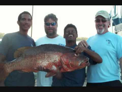 Panama Big Game Sport Fishing Club Photos 2