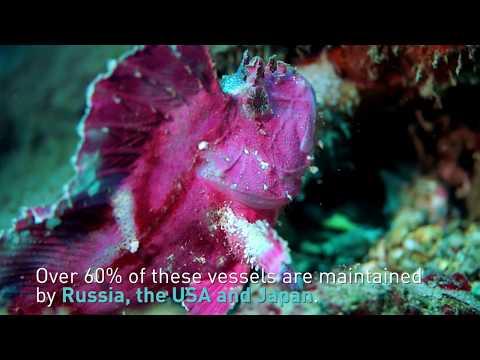 Global Ocean Science Report: Key Findings