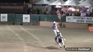 Самые прикольные трюки лошадей