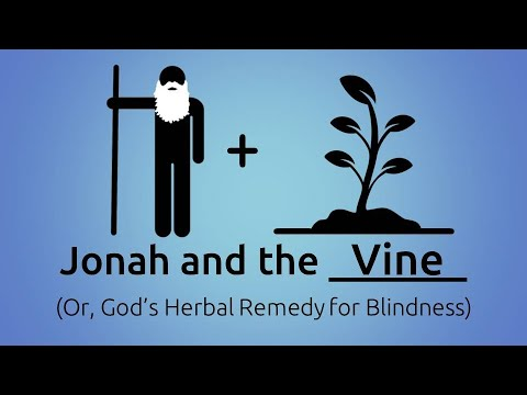 November 24, 2019 (Jonah and the Vine)