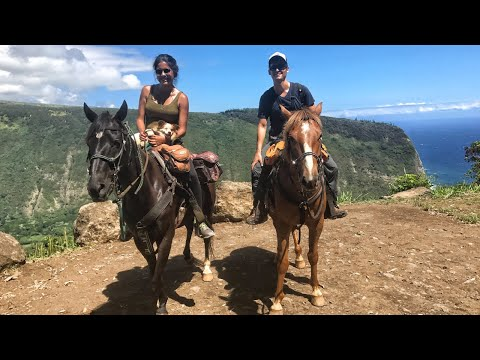 hawaii's-most-scenic-place---horseback-riding-the-waipio-valley-rim-🏞-(dji-mavic)