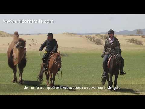 Mongolia Gobi desert horse riding holiday with Unicorn Trails