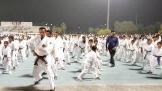 Guinness world record karate 2017 UAE