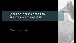 Добро пожаловать на канал КЗВС ОПТ. Welcome to the channel.