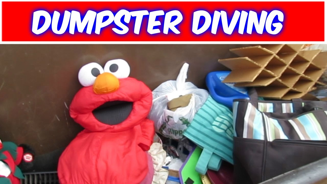 dumpster diving at thrift store  dumpster diving at thrift store 22