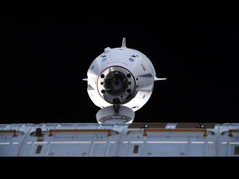 Crew-2 Mission | Approach and Docking