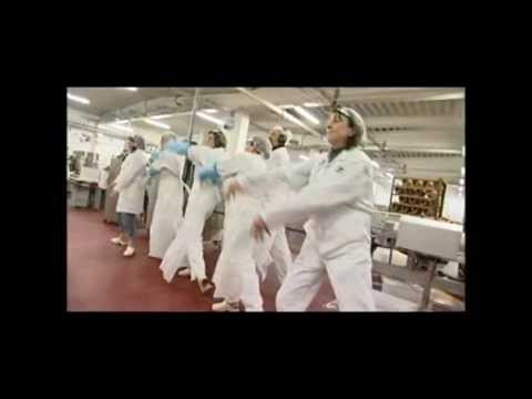 Nordfjord Kjøtt dance (takto sa pracuje v nasej firme:D)