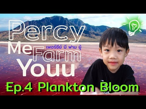Percy me farm youu Ep.4 : Plankton Bloom แพลงก์ตอนบลูม