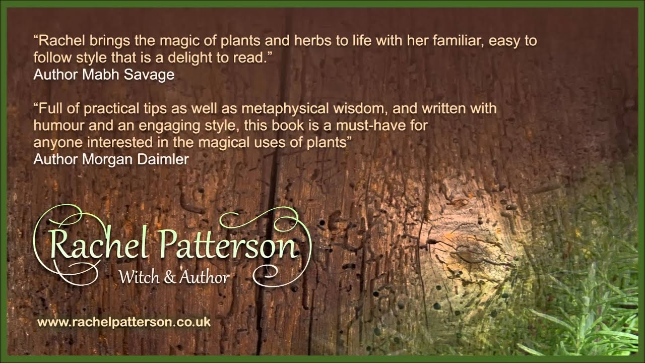 A Kitchen Witch's World of Magical Herbs book by Rachel Patterson