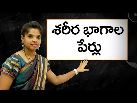 Names of body parts in telugu : శరీర భాగాల పేర్లు : Learn Telugu for all