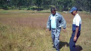 Bouncing land of india Manpat Surguja Chhattisgarh by Mrigendra Singhdev