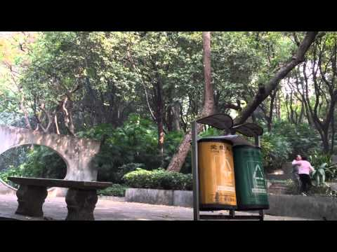 China Day 8 Guangzhou Yuexiu Park 广州越秀公园 (20 Jan 2015)