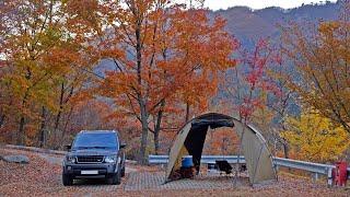 눈부신 가을날, 따듯한 동계 차박 캠핑 / 【캠핑 요리…