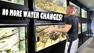 Automatic aquarium water changes | The King of DIY