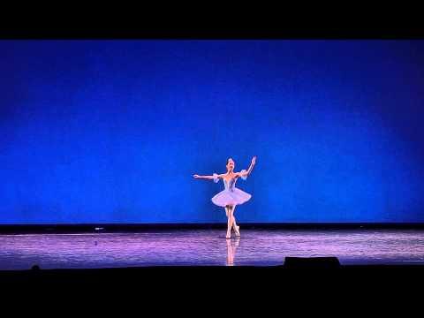 Вариация принцессы Флорины (Голубая Птичка)