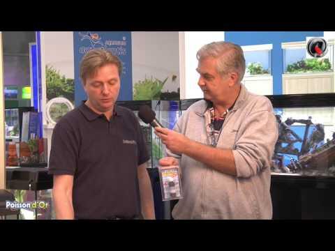 Tutoriel Comme créer son premier aquarium d'eau douce