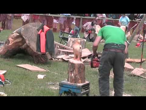 Barbara & Alan record Speed Chainsaw Carvings at Woodfest Wales June 2009