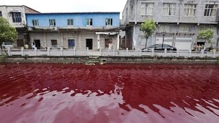 World WATERS turn BLOOD Red - CHINA, Officials Baffled 7.25.14 See DESCRIPTION
