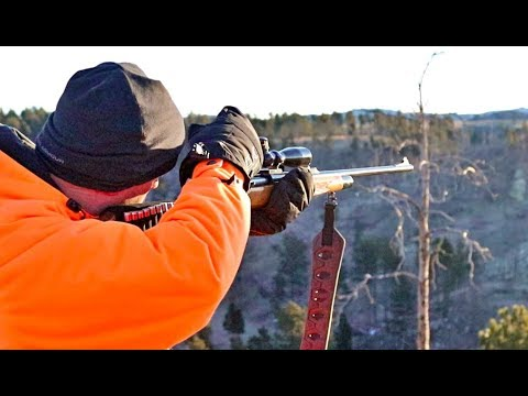 ELK HUNTING in WYOMING Day 2 (Scouting/ Hunting)