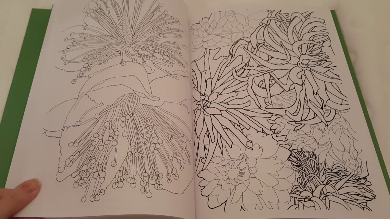 Coloriage Anti Stress Application.Art Therapie Jardins Extraordinaire 100 Coloriages Anti Stress