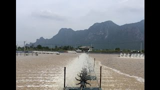 Aquamimicry RAS (A3) Shrimp Farming