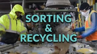 Sorting and Recycling Facility - Follow the Process