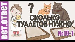 Туалет для кошек. Какой наполнитель? Ветответ 18