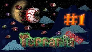 выживание в Terraria (Expert) - Начало начал и 50к! #1