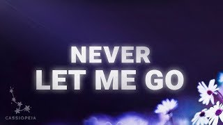 TEFFLER - Never Let Me Go (Lyrics)