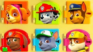 Best Paw Patrol Learning Videos Learn Zoo Animals