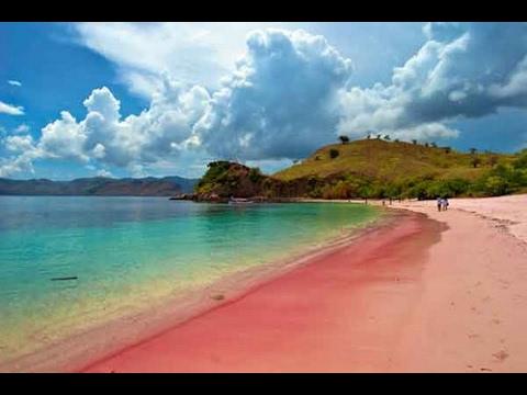Pink Beach  Lombok Island