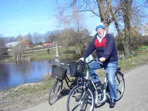 curtis cykel aldi