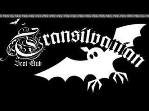 albums Transilvanian Beat Club Das Leben soll doch schön sein