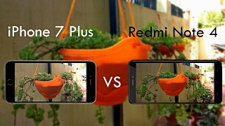 Redmi Note 4 Vs iPhone 7 Plus Camera