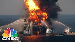 BP Oil Spill Leads To Discovery Of 60 New Species   CNBC