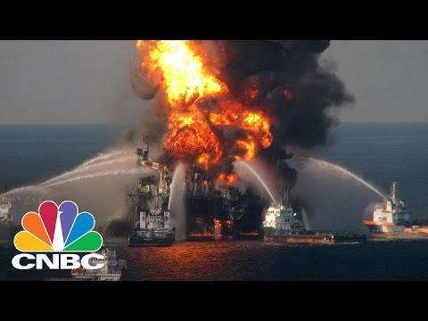 BP Oil Spill Leads To Discovery Of 60 New Species | CNBC