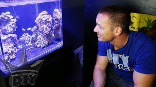 The LAST aquarium in the gallery
