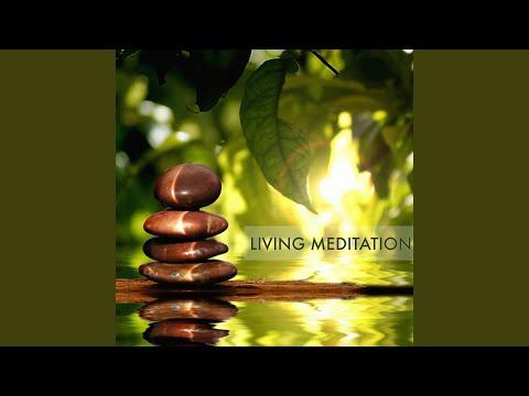 Transcendental Meditation Music for Spiritual Awakening