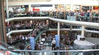 RTÉ Radio 1 Flash Mob Hallelujah Chorus in Dundrum Town Centre.