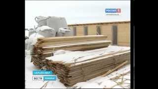 В Нарьян-Маре построят приют для бездомных животных