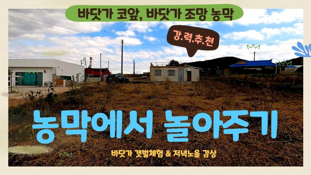 (매물133)  태안 바닷가앞 저렴한 농막