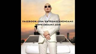 Pitbull - Back In Time [Download]