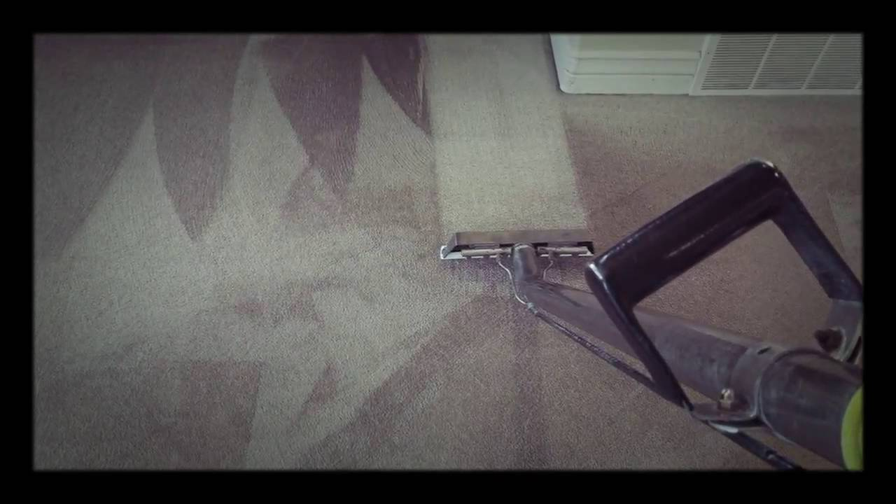 utah county carpet cleaning company alpine carpet care